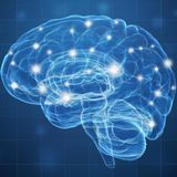 Neuroimaging study links addictive smartphone use to altered brain activity
