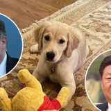 Mike Pompeo Breaks the Internet w/ Pic of His Dog & Winnie the Pooh Chew Toy