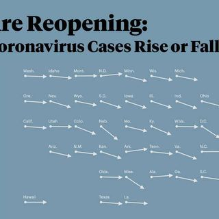 States Are Reopening: See How Coronavirus Cases Rise or Fall