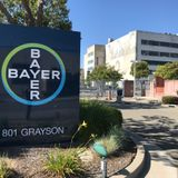 Bayer Berkeley plans to double workforce, significantly grow campus, over next 30 years
