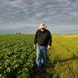 White House readies plan for $12 billion in emergency aid to farmers caught in Trump's escalating trade war