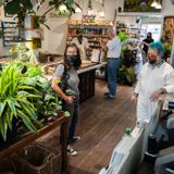 For Bay Area plant shops, business blooms amid pandemic