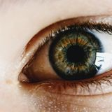 Brain Scans Show Why Our Mind's Eye Sees The World So Differently to Everyday Vision