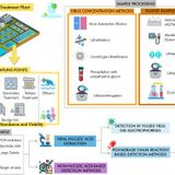 Viruses in wastewater: occurrence, abundance and detection methods
