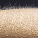 Science May Have Finally Explained The Reason Why We Still Get Goosebumps