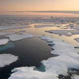 A New 'Forever Chemical' Has Been Detected in Arctic Seawater For The First Time