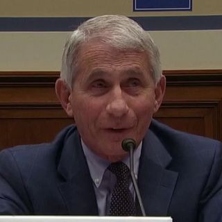 Dr. Fauci credits travel ban with saving lives, refuses to specifically blame protests for spreading COVID