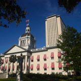 Here are South Florida's state legislative races to watch
