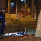 Sydney schoolboys allegedly 'gloated' about 'horrific' random attack - ABC News