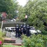 Tree toppled by Tropical Storm Isaias crushes, kills man sitting in car in Queens