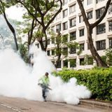 Singapore's dengue cases reach a record 22,403, surpassing 2013 high