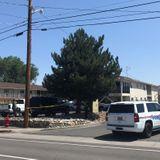 Body cam footage: Reno cop accidentally shot man after being struck by deputy's stun gun