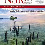 On the origin and continuing evolution of SARS-CoV-2