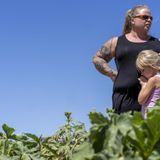 'A raging crisis': Metro Phoenix is losing its family farms and local food sources