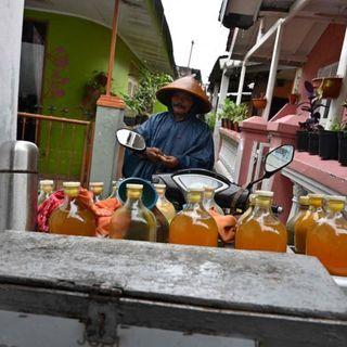 Indonesia President Joko stokes speculation herbs can fight coronavirus