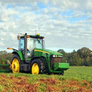 Study: 82% Of Georgia Farmers Have Seen Decline In Revenue   90.1 FM WABE