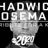 Chadwick Boseman: A Tribute for a King 2020 Special Is Now on Disney+