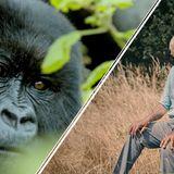 Attenborough makes stark warning on extinction