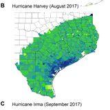 Political storms: Emergent partisan skepticism of hurricane risks
