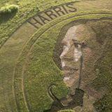 'Crop artist' makes portrait of Kamala Harris in a Kansas field
