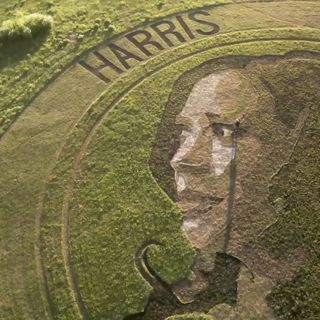 'Crop artist' makes portrait of Kamala Harris in a Kansas field