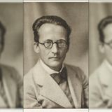 What Erwin Schrödinger Said About the Upanishads - The Wire Science