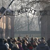 15% of young adults believe 'the Holocaust is a myth and did not happen' — or are unsure, survey finds
