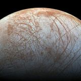 The Four Most Promising Worlds for Alien Life in the Solar System