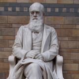 Charles Darwin: Theory of Evolution | Need For Science