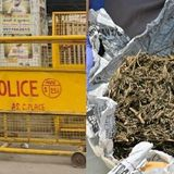 Delhi Police Seized 160 Kg Ganja, Reported 1 Kg & Sold The Remaining; Also Let Off The Peddler
