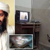 Osama bin Laden may have hidden encrypted messages in porn videos