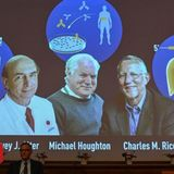 Hepatitis C discovery wins the Nobel Prize
