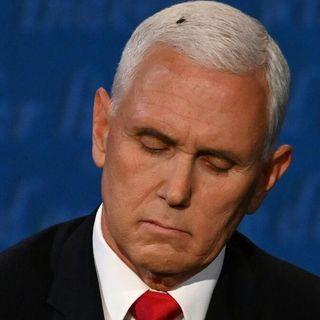 Vice presidential debate memes: Fly on Mike Pence's head wins night