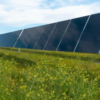 This game-changing solar company recycles old panels into new ones