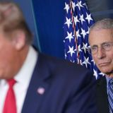 After Badmouthing Fauci For Months, Trump Campaign Sneaks Him Into TV Ad