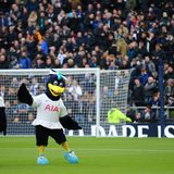 Pay cut for Spurs' non-playing staff... on day Daniel Levy's £3m bonus is revealed