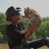 Joel McHale to Host 'Tiger King' After Show on Netflix