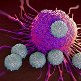 NR Can Enhance T Cell Antitumor Immunity by Restoring Mitochondrial Function