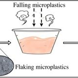 Microplastics in take-out food containers