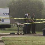 2 teens found shot to death after car crash in Willowbrook identified by family members