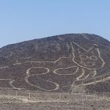 A 2,000-year-old cat was discovered carved on a hillside among Peru's Nazca Lines