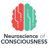 Integrating information in the brain's EM field: the cemi field theory of consciousness