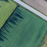 Monsanto lose case against French farmer