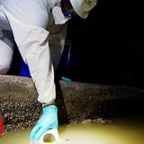 Covid: Sewage sites to test for more traces of virus