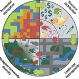 The ecological and evolutionary consequences of systemic racism in urban environments