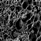 3D printed corals could improve bioenergy and help coral reefs