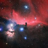 The Horsehead Nebula in Orion: An unbridled look