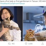 Taiwanese retaliate against WHO with #ThisAtt... | Taiwan News