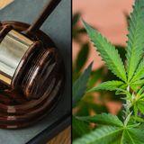 Mississippi Supreme Court Won't Consider Challenge To Medical Marijuana Measure Until After Election