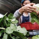 The coronavirus pandemic could threaten global food supply, UN warns